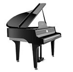 PHYSIS  G  1000 GRANDPIANO   NYHED